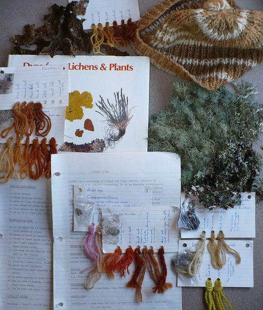 lichen dye samples | Flickr - Photo Sharing!