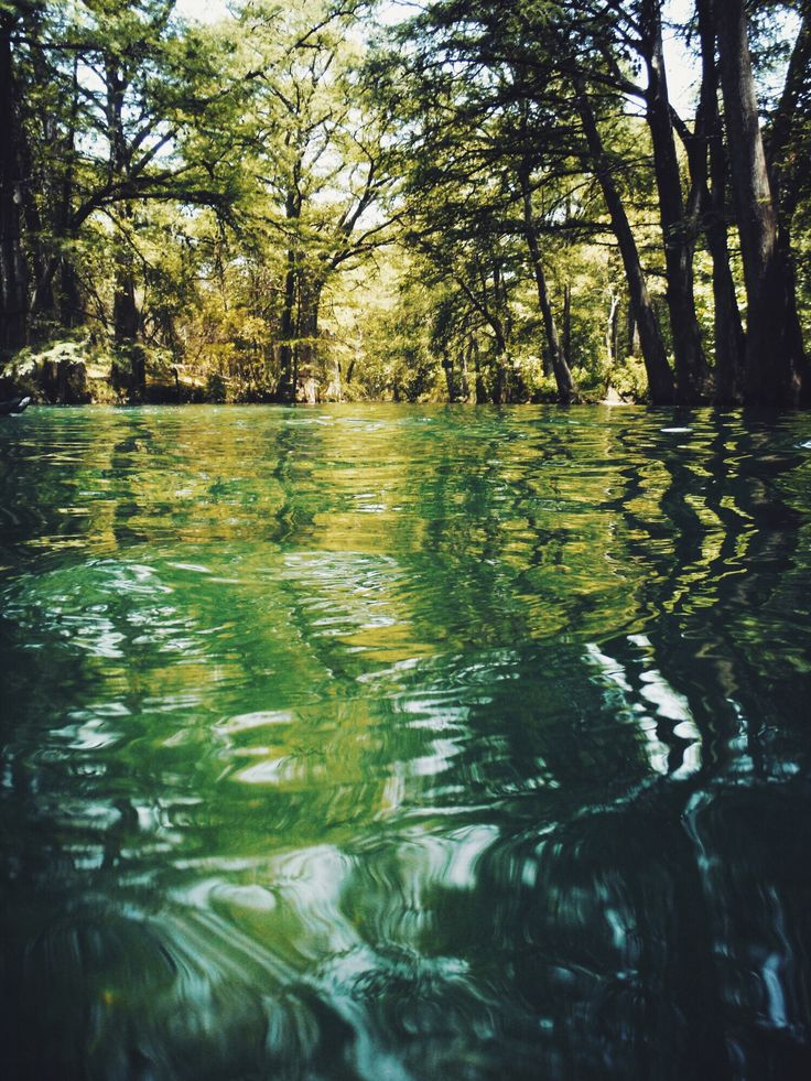 The Blue Hole - a refreshing spring-fed swimming hole in Wimberly, Texas