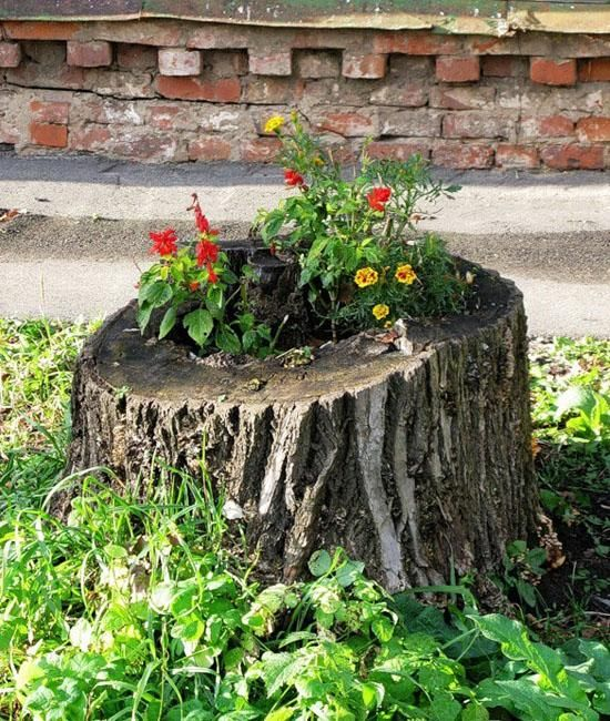 1000 images about tree stumps on pinterest stump table for Tree decorations for garden
