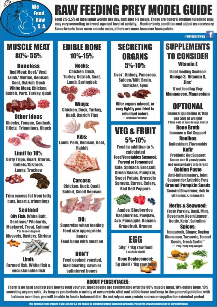 Pmr Guide We Feed Raw S A Raw Cat Food Recipes Raw Dog Food Diet Raw Dog Food Recipes