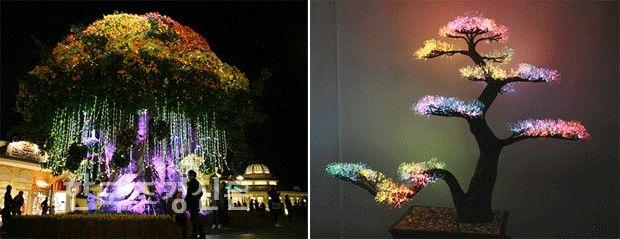 '빛'으로 오색 수를 새기다 :: 한국조경신문