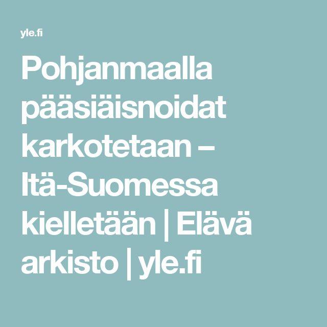 Pohjanmaalla pääsiäisnoidat karkotetaan – Itä-Suomessa kielletään | Elävä arkisto | yle.fi