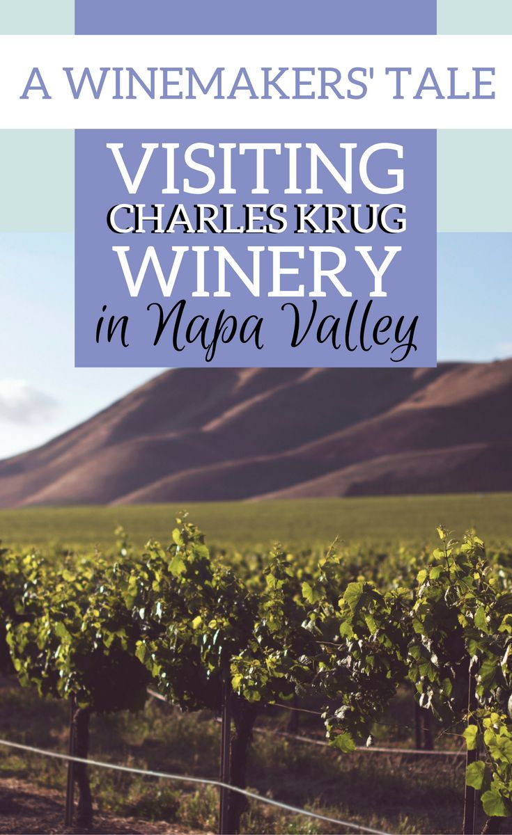Why you should visit Charles Krug Winery in Napa Valley, California: what makes this winery special.| Napa Valley wineries | Napa Valley wine tasting | Napa Valley wine map | Napa Valley vineyard #NapaValley #Napawine #Wine via @elainschoch