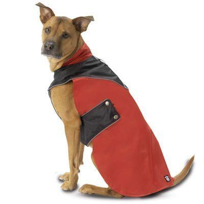 PetRageous Designs Tacoma Waterproof Dog Coat - Medium