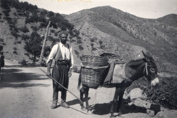 1950s Cyprus  Peloponnesian Folklore Foundation Photographic Archive, Nafplion