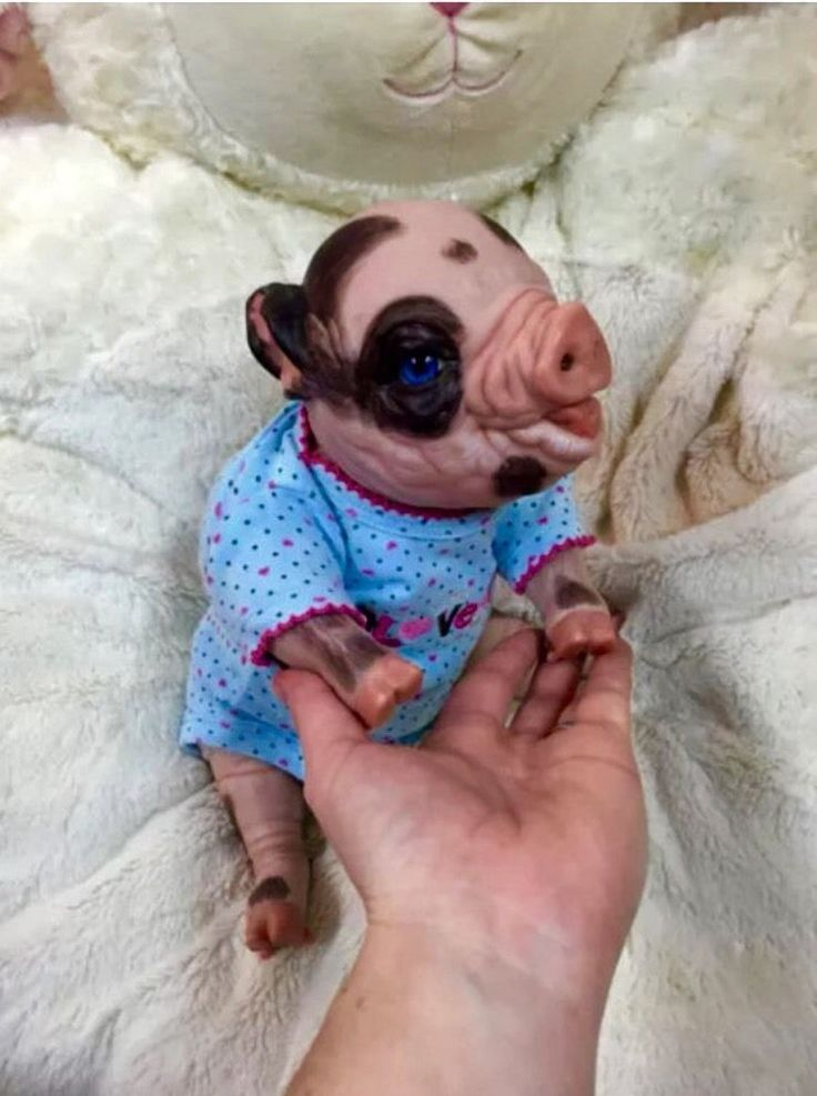 Up for sale/adoption is a custom handmade baby pig. Baby will be very fun and easy to dress and perfect for any collector. I would be more than happy to provide more photos of anything used to make your doll upon request.   eBay!