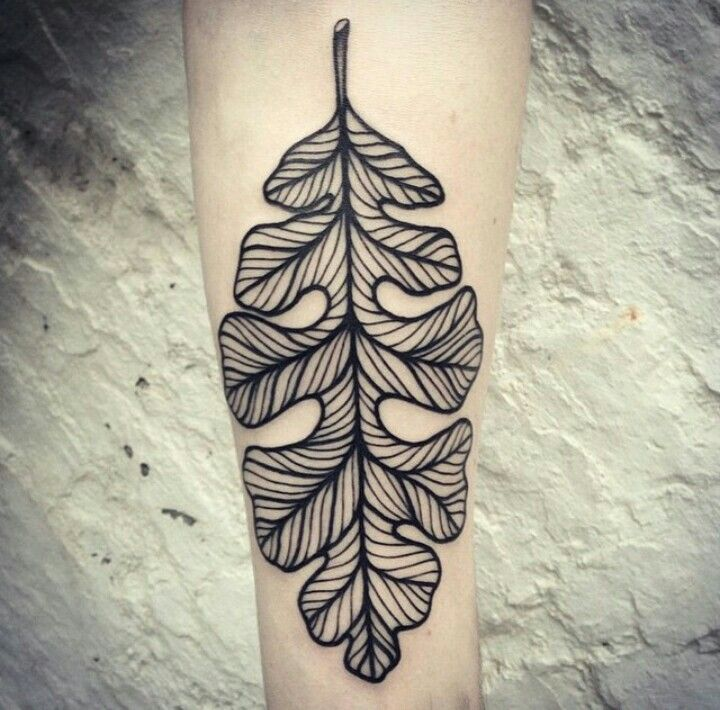 tattoo oakleaf #dotwork #blackworkers #blacklines The best part of Thousand Oaks is the Oak trees themselves which were my Sanctuary! All this one needs for me is a few acorns and perhaps some color. Its Beautiful as it is though!