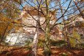 """Motiv Herbst im Pfälzerwald von pinopics günstig auf Fotoleinwand kaufen  Auf dem Eichelberg bei Busenberg, Teil der """"Drei Brüder"""""""