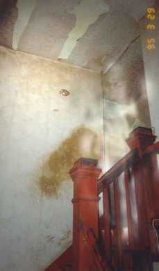 Len's Ghosts on the Stairway. www.anomalies-unlimited.com