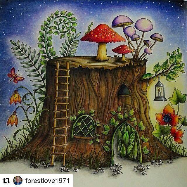 2198 Best Johanna Basford Secret Garden Enchanted Forest