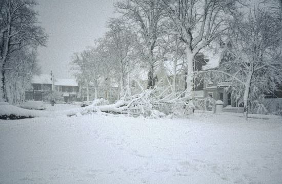 6 Checklist Items for When Disaster Knocks out Electricity