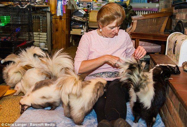 Deborah Cipriani vit avec 50 mouffettes - 2Tout2Rien