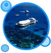 Great Barrier Reef Adventure  The beauty of the Great Barrier Reef is yours to experience.