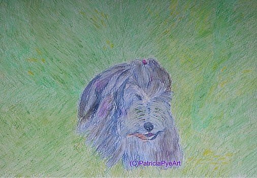 Patricia Pye - Art, Prints, Posters, Home Decor, Greeting Cards, and Apparel