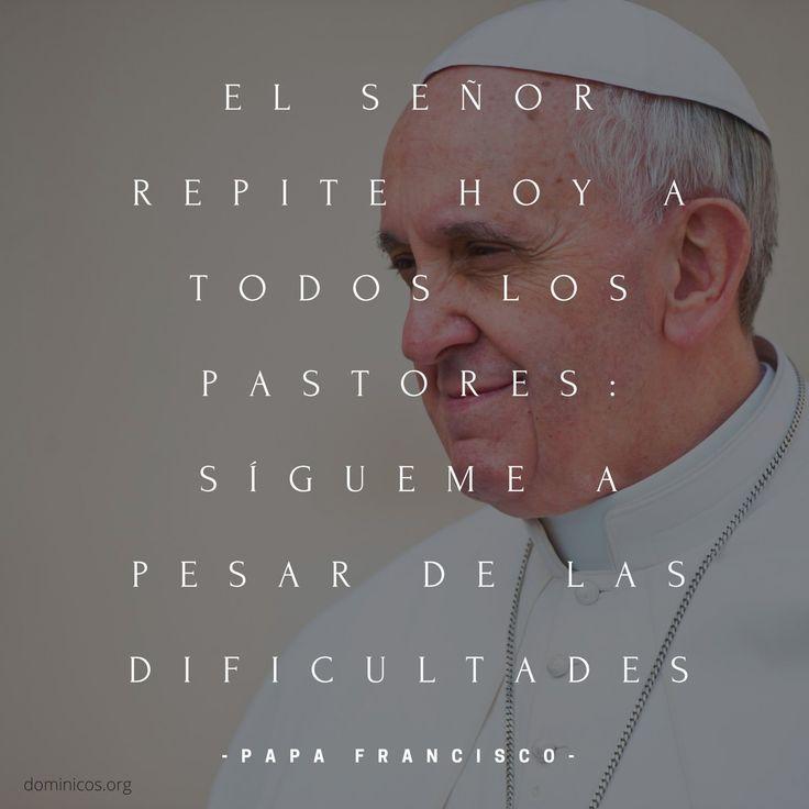 """Dominicos on Twitter: """"El Señor repite hoy a todos los Pastores, sígueme a pesar de las dificultades #PapaFrancisco https://t.co/I0rIqQaRJt"""""""