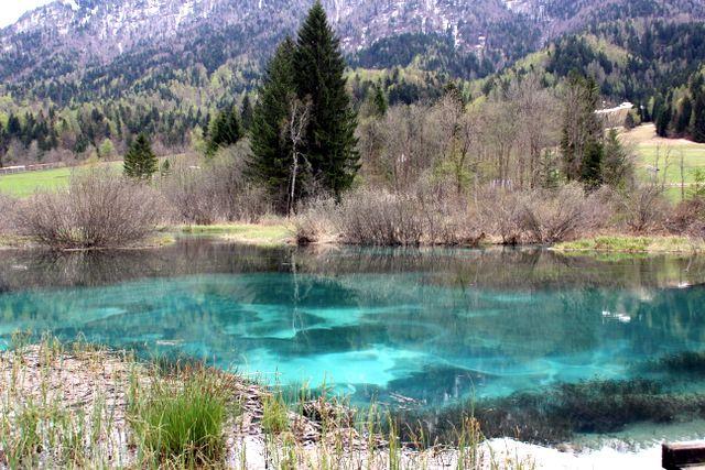 Zelenci Slovenia