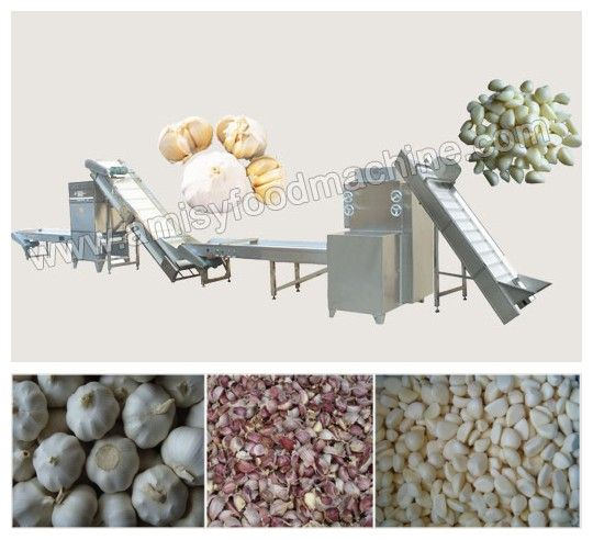 Link: http://amisyfoodmachine.com/product/shelling-machine/shelling-machine/garlic-processing-line.html Email: info@amisymachine@gmail.com The garlic processing production line consists of elevator, garlic bulb separating machine, picking line, elevator, garlic peeling machine and the picking line for the final product, it can equipped with slicing machine, cutting machine, bubble cleaning machine, air dryer, drying machine and other equipments for garlic deep processing.