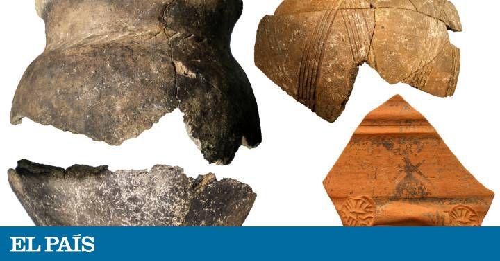 Arqueólogos hallan sedimentos de uva negra de hace 2.500 años tratada para consumir por el pueblo vacceo en el yacimiento de Dessobriga, en Palencia