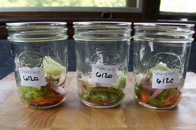 Seal your salad veggies in pint canning jars with your FoodSaver and prep your salads for a whole week at a time! (Seal your veggies separately from your lettuce for best results.)