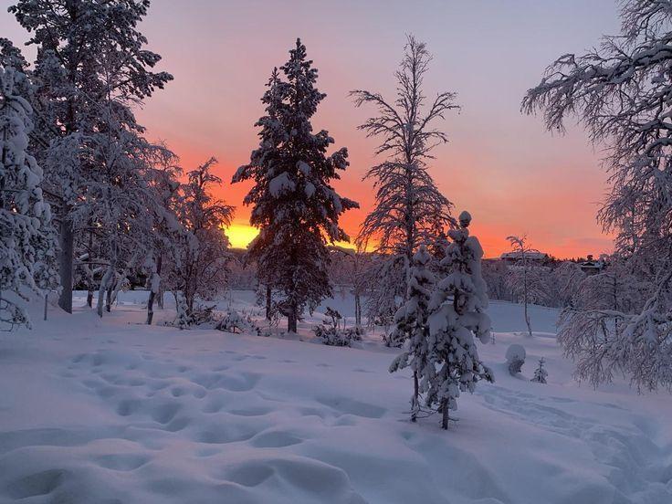 Woke up to this in Saariselkä Finland [1536×1024]…