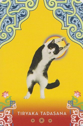 Cat Yoga: RESERVED by Jennifer @ Not Your Momma's Cookie, via Flickr