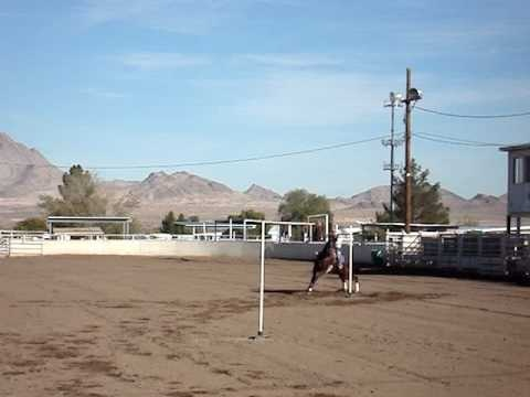 Bi-rangle is basically like single stake. Run up, go around the first pole then straight across to the second. The poles are set 45ft apart and 150ft from the timing line. A good time is 15 sec.