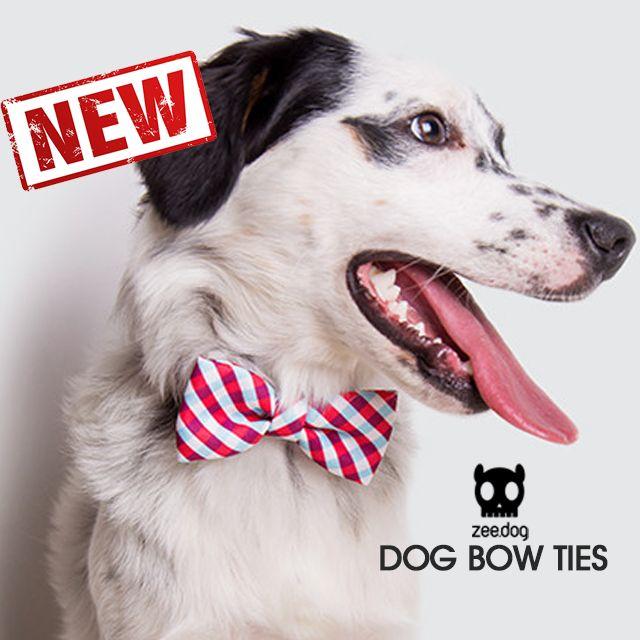 ¡NOVEDAD! Ya a la venta en nuestra tienda online para mascotas las divertidas pajaritas para perros de la marca Zee.Dog