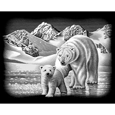 Reeves Scraperfoil - Silver - Polar Bear