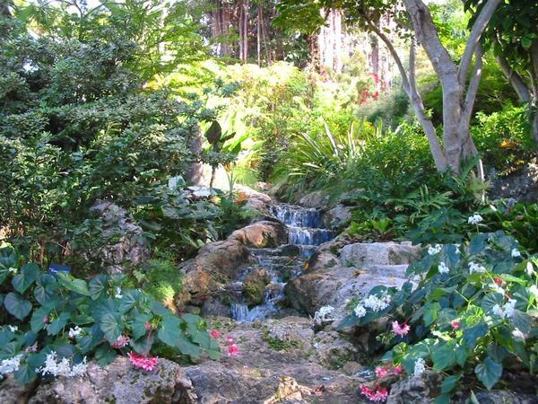 Ravine Gardens, Palatka, Florida