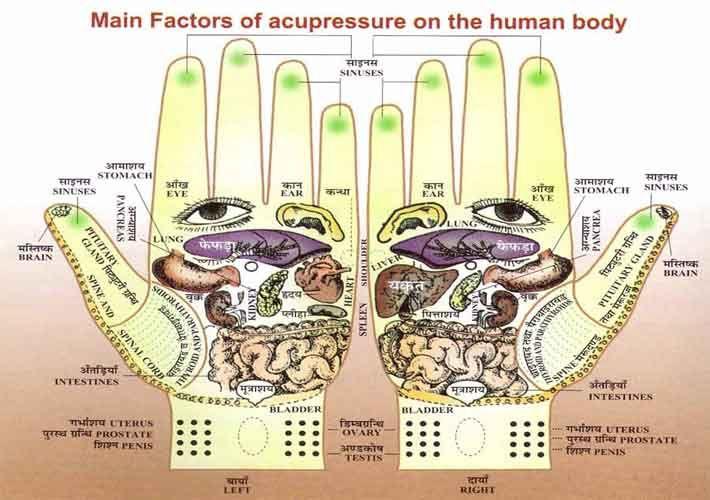 Hand reflexology chart: Divya acupressure therapy