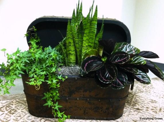 76 best images about indoor gardening on pinterest for Indoor gardening pdf