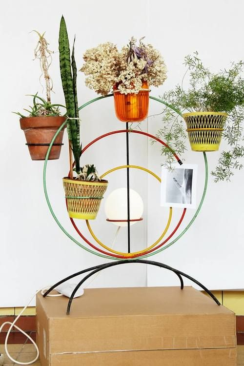 Plants holder