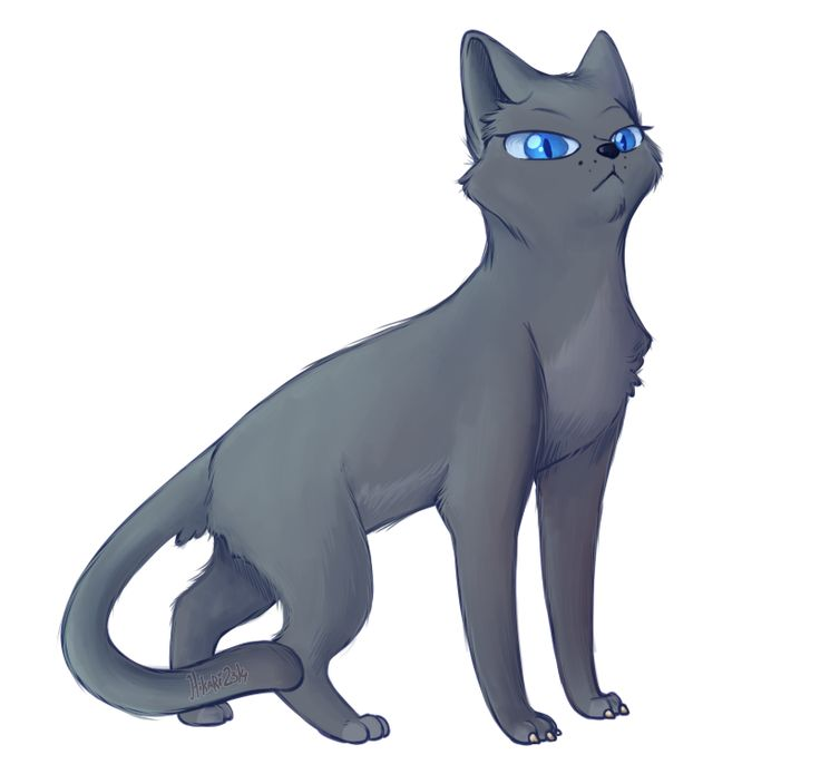 Sss Warrior Cats The Movie: 36 Best Bluestar's Prophecy Images On Pinterest