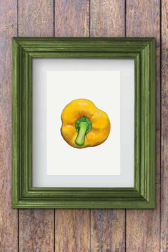 Yellow bell pepper illustration, aka. Paprika