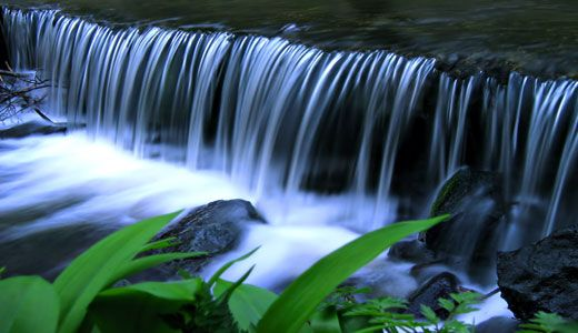 Alkalima - Nature and Serenity