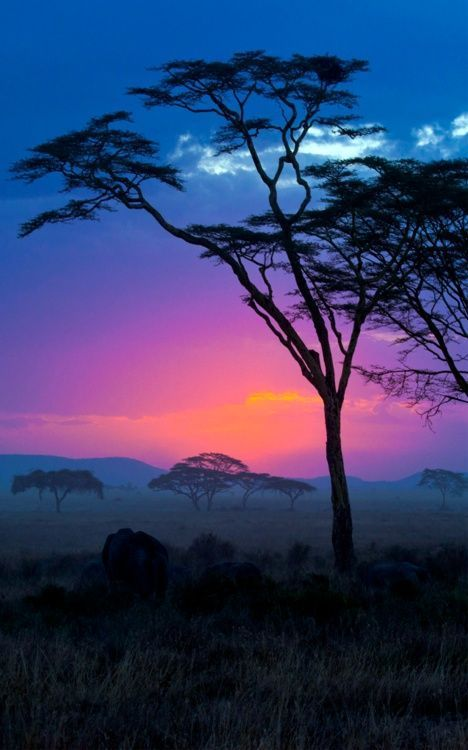 African sunset mother nature moments