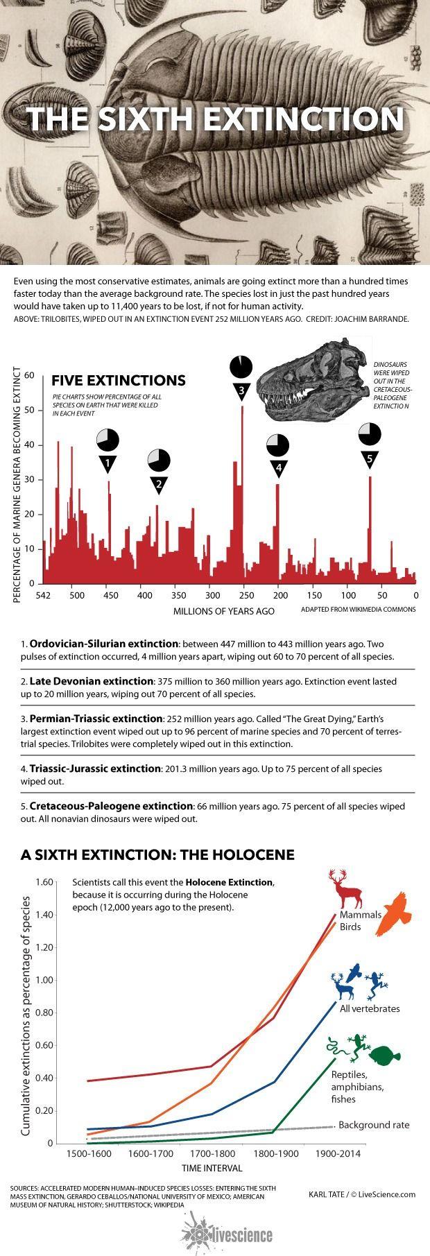 sixth-mass-extinction-150619b-02