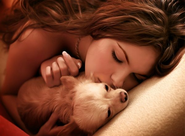 Women having sex with amimals Having Sex With Animals