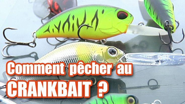 Comment pêcher au CRANKBAIT ? (brochet, perche, sandre...)