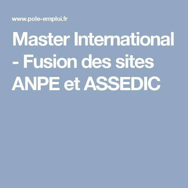 Master International - Fusion des sites ANPE et ASSEDIC