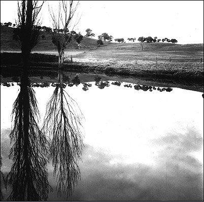 Max Dupain, Reflected landscape near Albury, 1939