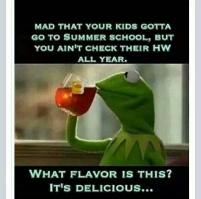 Summer School   Kermit Meme's   Kermit, Kermit the frog ... None Of Your Business Quotes Kermit