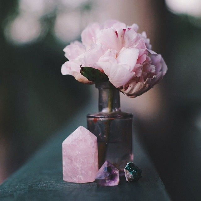 This Pin was discovered by MOON + QUARTZ  | Transformational Astrology. Discover (and save!) your own Pins on Pinterest.