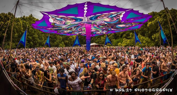 ORGANIK GAIAN DREAM    When: October    Coming from humble beginnings, Organik has quietly grown into one of Cape Town's most respected festivals.