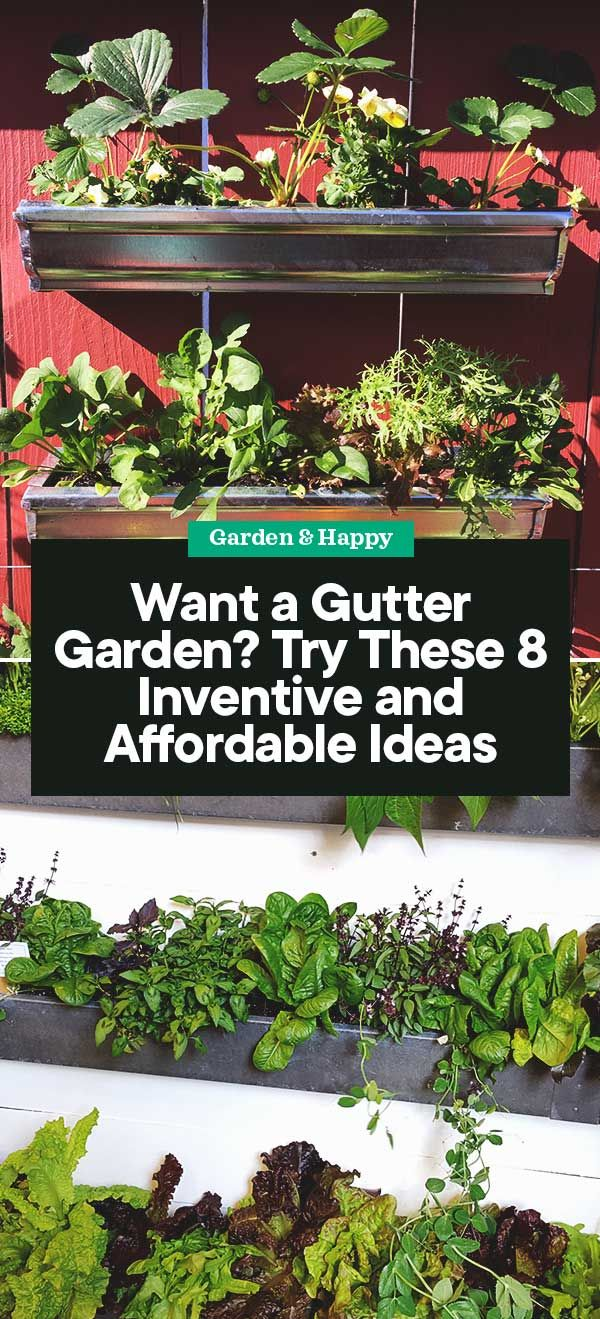 Try These 8 Inventive And Affordable Gutter Garden Ideas Garden And Happy Gutter Garden Garden Types Garden Solutions