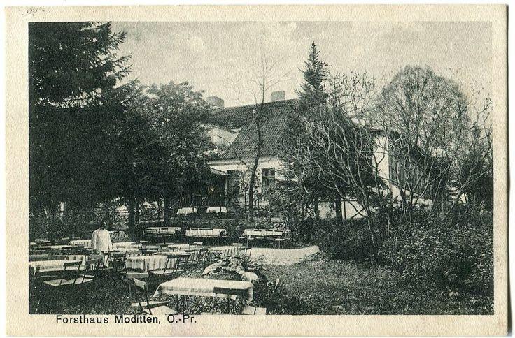 Ak Forsthaus Moditten Модиттен А. Космодемьянского Königsberg Kant-Häuschen 1916