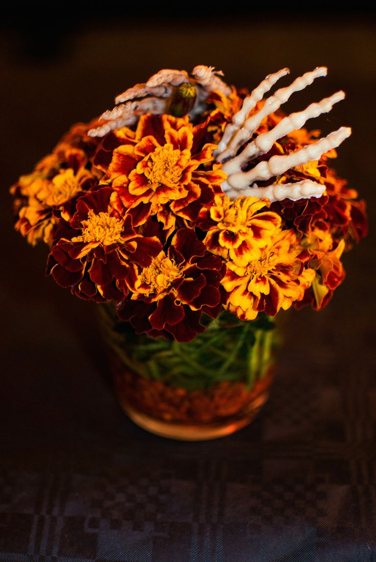 60 best caution haunted flowers images on pinterest halloween halloween flowers google search izmirmasajfo Choice Image
