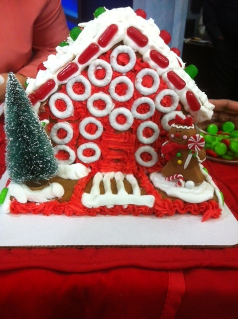 THV's Alyse Eady decorates a gingerbread house for a good cause!