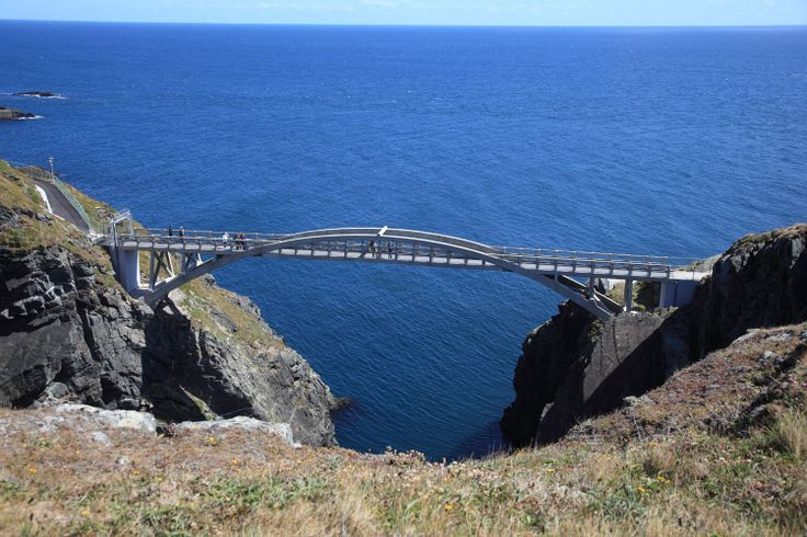 Book early and save on escorted ireland tours