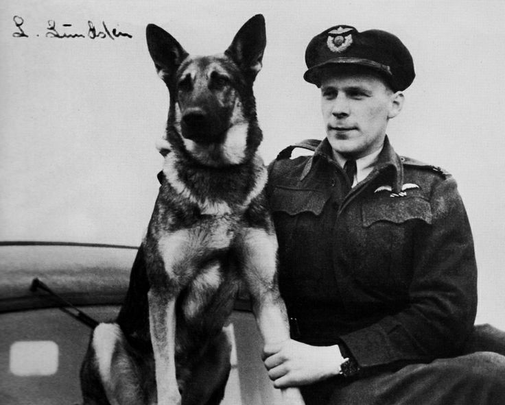 Leif Lundsten and mascot Varg, 331 Squadron. Norwegian Spitfire pilot.